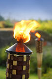 Tiki Torches Stock Photography
