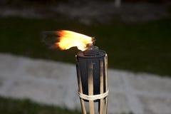 Tiki torches burning Stock Photography