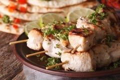 Tikka κοτόπουλου kebabs στη μακροεντολή οβελιδίων σε ένα πιάτο οριζόντιος Στοκ Φωτογραφία