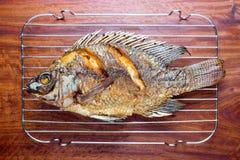 Tilapia που τηγανίζεται φρέσκο Στοκ φωτογραφίες με δικαίωμα ελεύθερης χρήσης