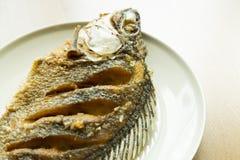 Tilapia del Nilo o fritada del niloticus de Oreochromis en plato Imagenes de archivo