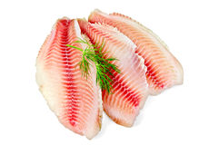 Fillets tilapia with dill Royalty Free Stock Photos