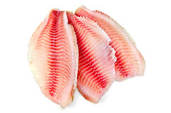 Fillets tilapia Stock Photos