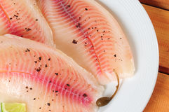 Tilapia fish. Marinated slices of tilapia fish fillet stock photography