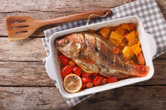 Tilapia fish baked with bell peppers, carrots and thyme close up Stock Photography
