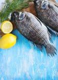 Tilapia fish Royalty Free Stock Image