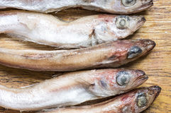 Tilapia fish carcasses Royalty Free Stock Photos
