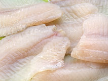 Tilapia fish fillets Royalty Free Stock Images