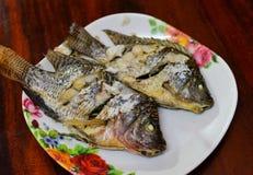 Tilapia fish grill Stock Photography