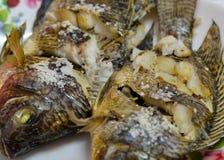 Tilapia fish grill Stock Photos