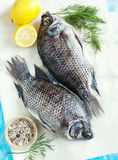 Tilapia fish. Raw Tilapia fish with lemon and spices stock photo