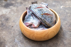 Tilapia fish ready for cooking ingredients. Dieting and healthy ingredients ready to prepare meal Royalty Free Stock Images