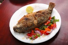 Tilapia fish meal. Tilapia fish with salad on table stock image