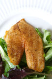 Tilapia fish seasoned Royalty Free Stock Photo