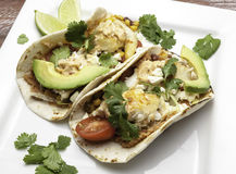 Tilapia Fish Tacos royalty free stock photography