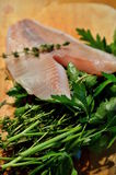 Tilapia with herbs Royalty Free Stock Images
