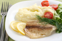 Tilapia with mashed potato Stock Image