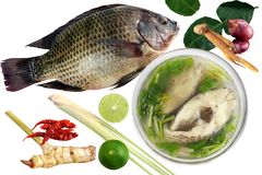 Tilapia och kokt tilapiafisk i klar bunke och ingredienscurry på vita bakgrundsTom-sötpotatis-plommoner thai ord, styckskivafisk Royaltyfria Foton