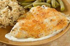 Tilapia parmesan meal Royalty Free Stock Image