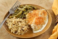 Tilapia parmesan meal Royalty Free Stock Photography