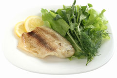 Tilapia with rucola and lettuce Royalty Free Stock Photo