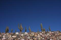 Tilcara Pucara and Cactus Stock Image