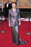 Tilda Swinton. At the 14th Annual Screen Actors Guild Awards at the Shrine Auditorium, Los Angeles, CA. January 27, 2008 Los Angeles, CA. Picture: Paul Smith / royalty free stock image