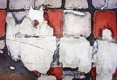 Tile. A multi-layered broken tile walkway texture royalty free stock photos