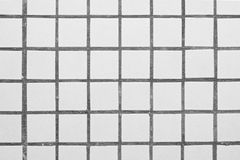 Tile. Square white ceramic tile in the form of a grid Royalty Free Stock Images