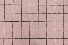 Tile. Bruschatnye colored tiled walkways diced Stock Photos