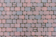 Tile. Bruschatnye colored tiled walkways diced Royalty Free Stock Photo