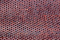 Tile Roof. Stock Photo