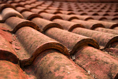 Tile roof. The tile roof close-up view Royalty Free Stock Photography