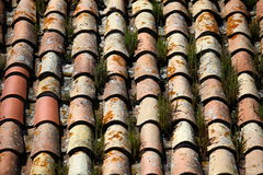 Tile roof  grassy Royalty Free Stock Image