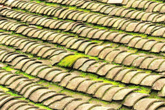 Tile roof with moss Royalty Free Stock Photo