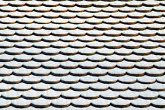 Tile roof in the snow. Winter background Royalty Free Stock Image