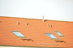 Tile roof with windows Stock Images