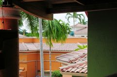 Tile roofs & palm trees & colorful office buildings, FL royalty free stock photo