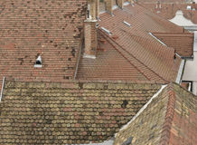Tile roofs Royalty Free Stock Photography