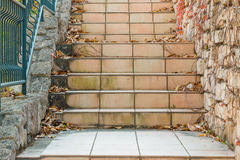 Tile stairs with dry leaves. Royalty Free Stock Images
