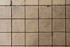 Tile texture. Royalty Free Stock Photography
