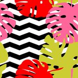 Tile tropical vector pattern with exotic leaves on black and white zig zag background. Or seamless decoration wallpaper Stock Photography