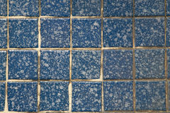 Tile wall. The blue kitchen or bathroom tile wall Stock Photos