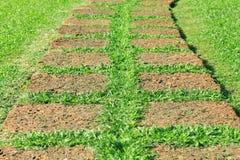 Tiled Garden Path Stock Photos