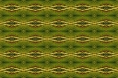 Tiled pattern from a close-up of an autumn leaf. stock photos