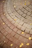 Tiled Pavement with Fallen Autumn Leaves Stock Images