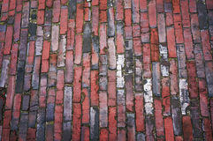 Tiled pavement texture. Stock Images