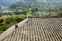 Tiled roof of aged farmhouse in blossoming mountain of sunny spi Stock Photography