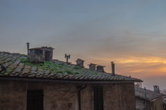 Tiled roof of the old building at sunset light. Siena, Tuscany, Italy. Stock Photography