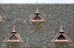 Tiled roof - RAW format Stock Photos
